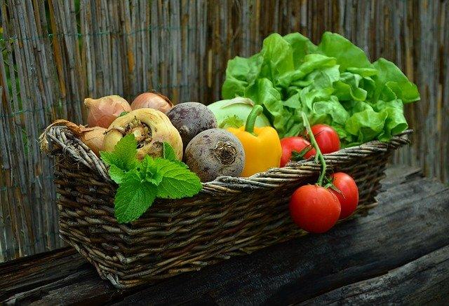 czy wegetarianizm jest zdrowy